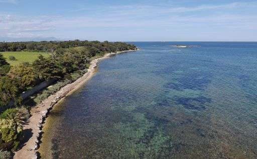 Saint Honorat Island off Cannes has benefited from the seaside city's excellent performance